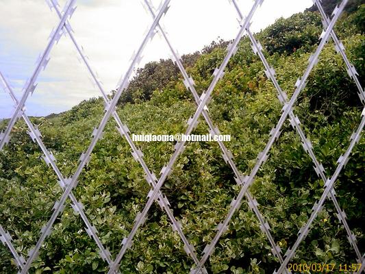 raising fences essay