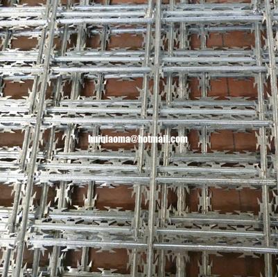 China 50X100mm/100X150mm Welded Razor Mesh|Razor Wire Fencing distributor